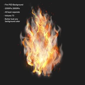 Chamas de fogo isoladas em transparente