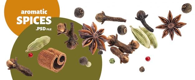 Coleção de especiarias aromáticas