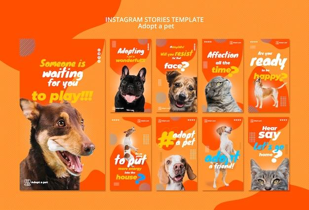 Coleção de histórias do instagram para adoção de animais de abrigo
