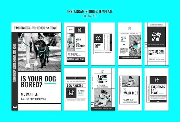 Coleção de histórias do instagram para uma empresa profissional de passear com cães
