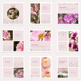 Coleção de post de instagram floral