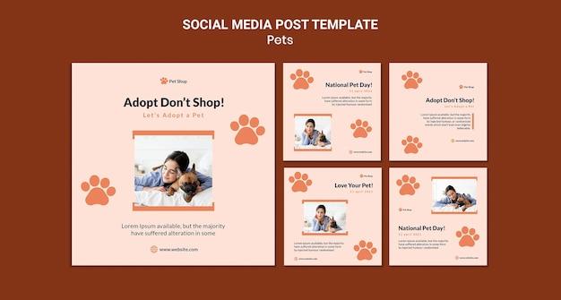 Coleção de postagens do instagram para adoção de animais de estimação