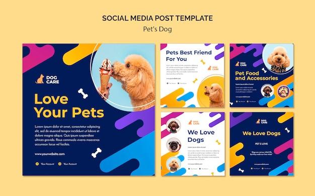 Coleção de postagens do instagram para empresas de pet shop