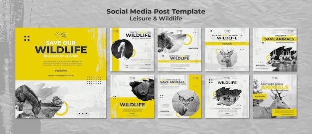 Coleção de postagens do instagram para proteção da vida selvagem e do meio ambiente