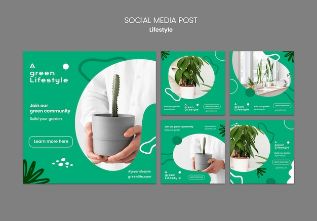 Coleção de postagens do instagram sobre estilo de vida verde com planta