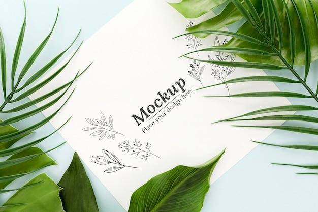 Composição de folhas verdes com maquete de vista superior