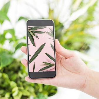 Conceito de jardinagem com a mão segurando o smartphone