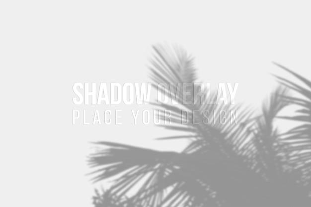 Conceito transparente de efeito de sobreposição de sombras