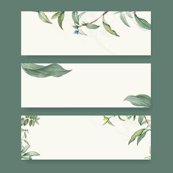 Conjunto de desenhos de fundo botânico