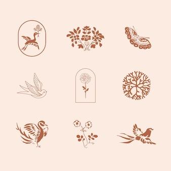 Conjunto de ilustrações vintage de elementos de design de identidade visual natural