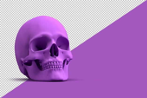 Crânio humano roxo em renderização 3d isolado