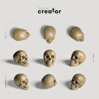 Crânio realista variedade de ângulos criador de cena de halloween