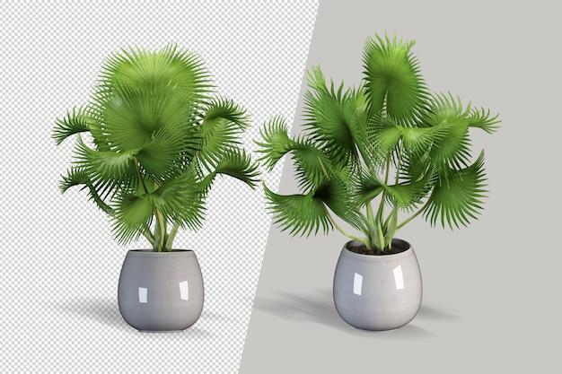 Criador de cena de pequena planta interior em vaso de cubo