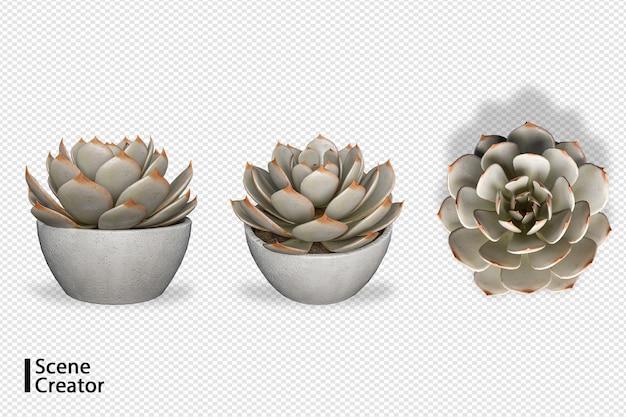 Criador de cena de plantas em vários ângulos