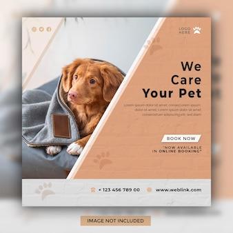 Cuidamos do seu animal de estimação design de modelo de postagem de mídia social no instagram