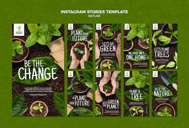 Cultivando plantas, histórias do instagram