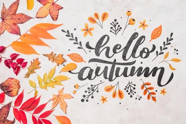 Decoração de outono vista superior com folhas