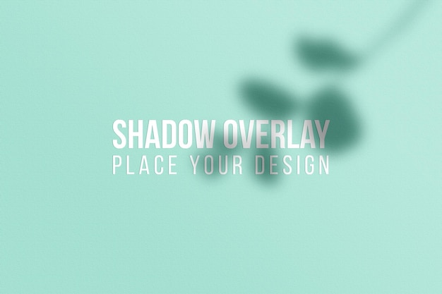 Deixa a sobreposição de sombras e o conceito transparente de efeito de sobreposição de sombras na janela