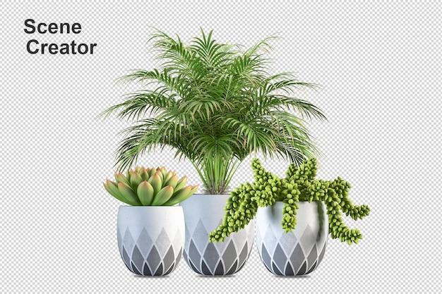 Desenho de flores em renderização 3d isolado
