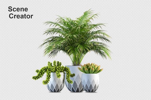 Desenho de plantas em renderização 3d isolado