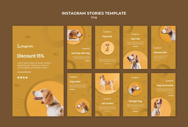 Dog instagram stories collection