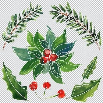 Elementos florais em aquarela de natal e ano novo, ilustração em camadas