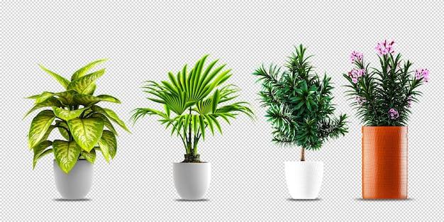 Flores de plantas em vasos em design renderizado 3d