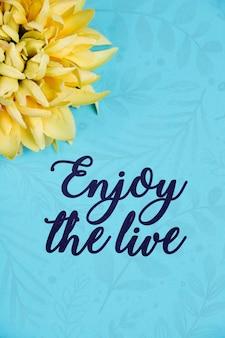 Flores desabrochando ao lado da mensagem positiva