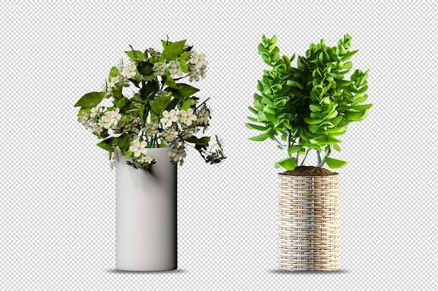 Flores em vaso em renderização 3d isoladas