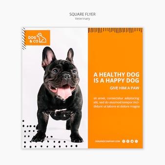 Flyer com modelo veterinário