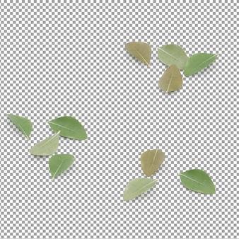Folhas isométricas