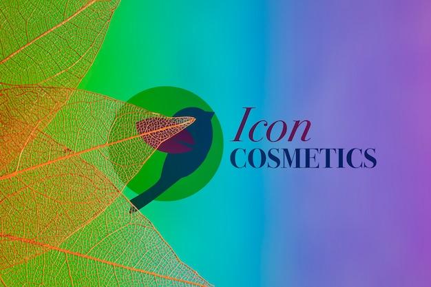 Folhas translúcidas com logotipo e fundo colorido