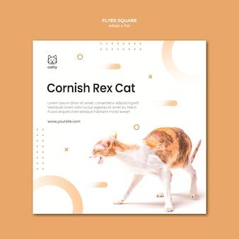 Folheto quadrado para a adoção de um animal de estimação