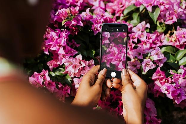 Fotografia de flores