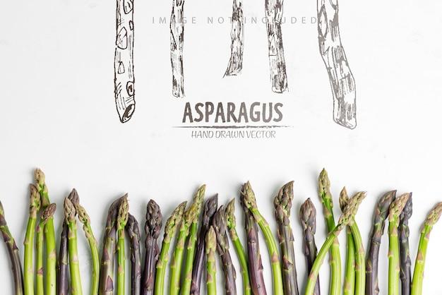 Fronteira criativa de lanças de aspargos orgânicos crus cultivados em casa, prontas para cozinhar alimentos saudáveis de dieta vegetariana em uma superfície de mármore cinza claro.