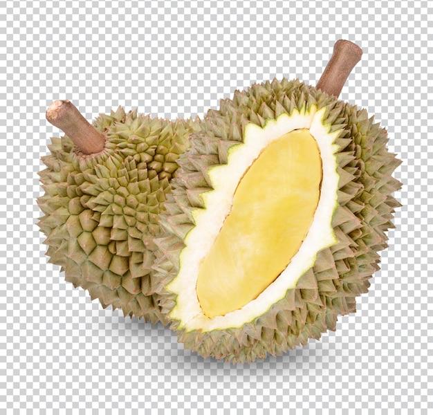 Fruta durian fresca isolada
