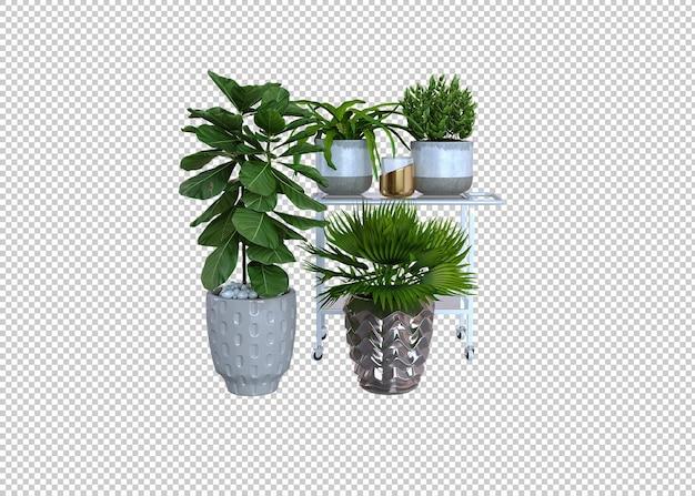 Grandes plantas verdes de interior em vasos de plantas