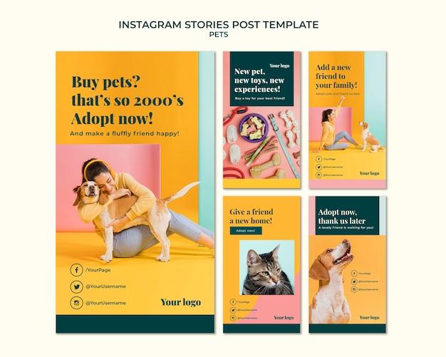 Histórias de animais de estimação no instagram