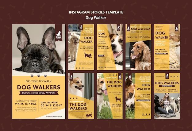 Histórias de instagram de passeador de cães