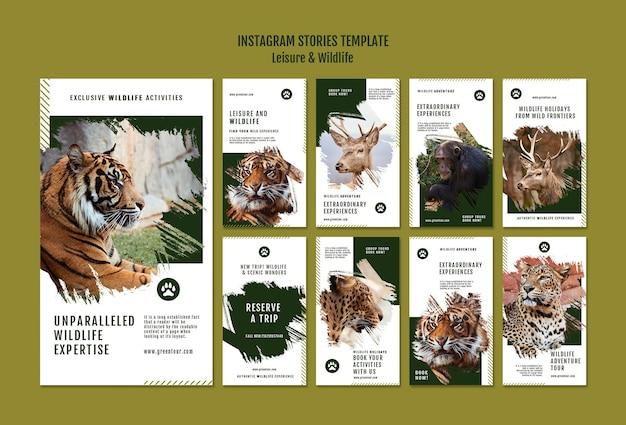 Histórias de mídia social de lazer e vida selvagem
