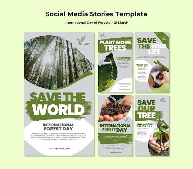 Histórias do instagram do dia internacional da floresta