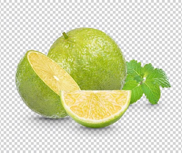 Limão fresco com folhas de hortelã isoladas