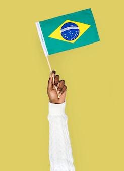 Mão, segurando, bandeira brasileira, isolado