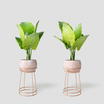Maquete de 3d renderizados plantas em vasos