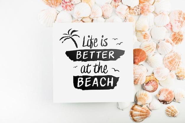 Maquete de cartão com conceito de verão tropical com conchas