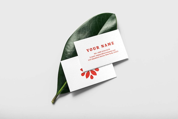 Maquete de cartão de visita mínimo em folha verde