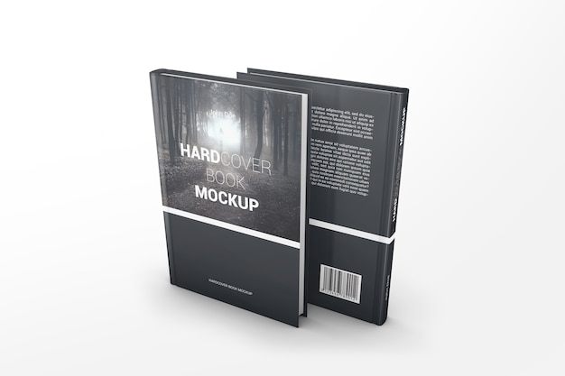 Maquete de dois livros de perspectiva