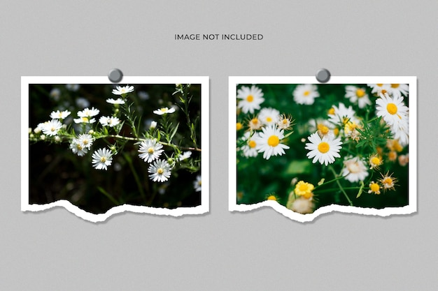 Maquete de foto com moldura dupla em papel rasgado