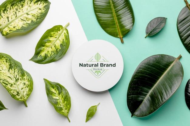 Maquete de marca natural com folhas