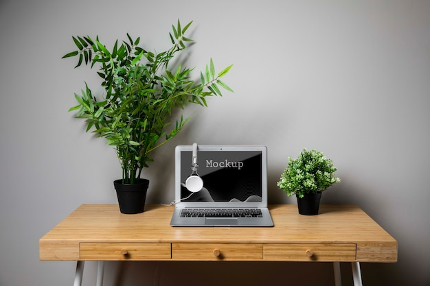 Maquete de plantas e macbook